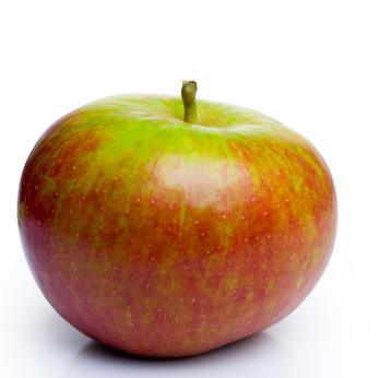 продавам ябълки сорт Молиз Делишес - Molis Delicious