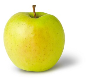 продавам ябълки сорт Златна превъзходна - Golden Delicious