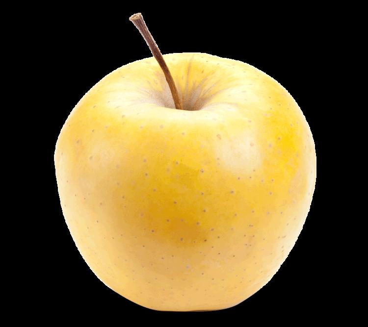Ябълка сорт Златна Превъзходна (Golden Delicious)