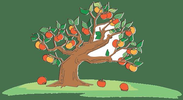Производител на Ябълки